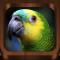 Vogelstimmen 2000+ Song Sound
