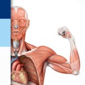 App Icon: PROMETHEUS - LernKarten der Anatomie 3.0