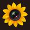 Photo Manager Pro