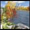 Herbst Live Wallpaper
