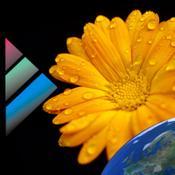App Icon: Pollenvorhersage (DEU) 1.1