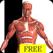 App Icon: Visual Anatomy Free