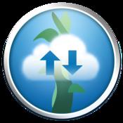 App Icon: Beanstalk
