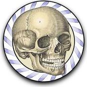 App Icon: Speed Bones MD