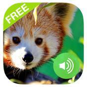 App Icon: Tierstimmen Kostenloser: Geräusche und fotos tiere vom Kuh, Hund, Adler, Ente, Löwe, Wal, Giraffe. Tiergeräusche Für Kinder 4.0.0.8