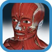 App Icon: 3D Anatomy Muscle and Bone 1.0