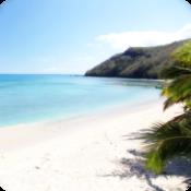 App Icon: Verloren im Paradies