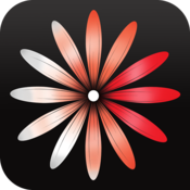 App Icon: WomanLog-Kalender