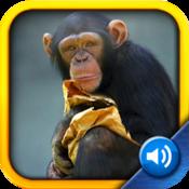 App Icon: Kinderzoo: Bilder & Sohn