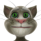 Sprechender Kater Tom - Talking Tom Cat